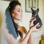 Невеста с любимым питомцем